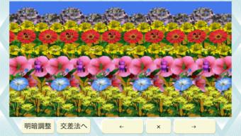3D視力回復2/HDスクリーンショット
